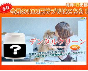 【送料無料】毎月1日更新!1000円サプリ|3月は『デンタルクリーン』の月!!