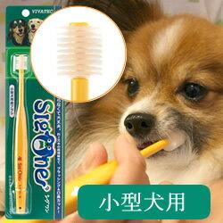 ビバテックペット歯ブラシシグワン小型犬用歯ブラシ【歯磨きデンタル口臭予防口臭対策】