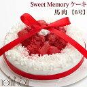 愛犬用ケーキ Sweet Memory ケーキ 6号 馬肉 犬 誕生日ケーキ バースディケーキ【a0189】