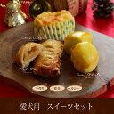 【クリスマス予約販売12月発送】【愛犬用】クリスマススイーツ