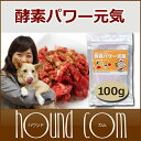 犬 酵素 酵素パワー元気 100g お試し 犬が消化できる野...