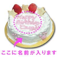 愛犬用ケーキFOOTMARKケーキ/4号/ささみ犬誕生日ケーキバースディケーキ【マラソン1106P05】