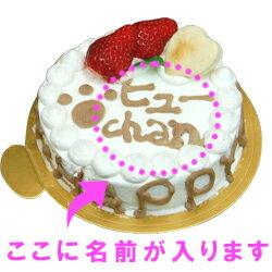 愛犬用ケーキHappyDayケーキ/6号/馬肉犬誕生日ケーキバースディケーキ【マラソン1106P05】