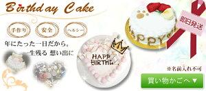 犬誕生日ケーキ即日発送/HappyDayケーキ/4号/ささみ/犬用バースディケーキデコレーションケーキ5P13oct13_b【RCP】