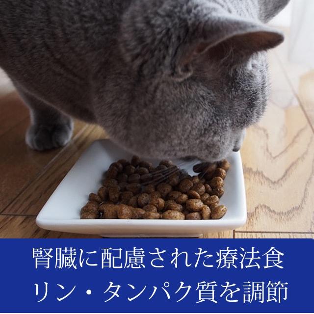 【初回】3点スターターセット FORZA10 リナールアクティブ454g+ウェット1缶+天然活性オメガ3オイル 腎臓療法食とオメガ3のセット (フォルツァディエチ) キャットフード 猫の餌 ドライフード フォルツァ10 エサ えさ 餌 プレミアムフード
