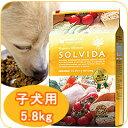 犬用 SOLVIDA ソルビダ インドアパピー 5.8kg 室内飼育 子犬用 離乳食 妊娠中 授乳中 母犬用 ...