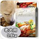 犬用 SOLVIDA ソルビダ インドアシニア 5.8kg 室内飼育 老犬用 低カロリー オーガニックフード...