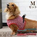 ASHUウェアハーネス 唐草セット Mサイズ(小型犬用)| 犬 ハーネス リード