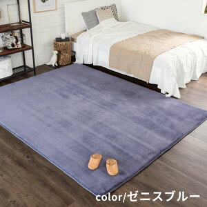 【送料無料】低反発ラグマットマイクロファイバーラグカーペット[200cmx300cm]