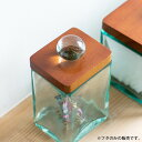 【2色展開】フタ ウッド ガラス 取っ手付き ガラスケース6×5cmハ...
