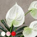 アジアン 造花 アンスリウム【3色展開】(61600-61601-61...