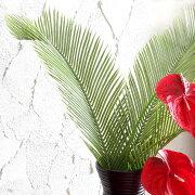 フェイクグリーン おしゃれ オブジェ リビング アジアン フラワー ハワイアン アートプランツ フェイク ナチュラル グリーン