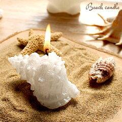 ビーチリゾート感溢れる爽やかなホワイトキャンドル☆プチギフトにおすすめ巻貝キャンドル(6112...