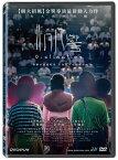 香港映画/ 非同凡響 (DVD) 台湾盤 Distinction