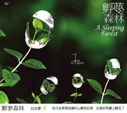 ザ・デイドリーム/ A Sleeping Forest (CD) 台湾盤 The Daydream スリーピング・フォレスト 白日夢 白日夢4-孵夢森林