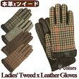 手袋 レディース レザー 革 / 婦人用 羊革手袋 / MICHEL KLEIN S-Mサイズ