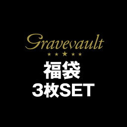 Gravevault/グレイブボールト 厳選3枚 ビキニ/ブリーフ/Tバック スペシャル福袋 ビキニ Tバック 下着 メンズ アンダーウェア