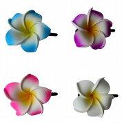 プルメリア花のヘアピン4CLORSLサイズ