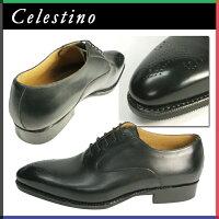 ce14-CELESTINO-