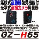 GZ-H65 【無線式盗聴器発見モード機能搭載光学式盗撮カメ...