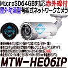 MTW-HE06IP(HOME-EYE)【人感センサー搭載屋外設置対応有線式P2Pネットワークカメラ】