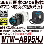 WTW-AB95HJ【220万画素レンズ交換対応ボックス型カメラセット】