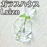 「ガラスハウスLサイズ」インテリアフラワーベース花瓶小さい家型ガラス透明壁掛け花器一輪挿しガラスベース