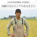 [セール][30年度産 自然栽培米] 阿蘇のなかストアのお米...