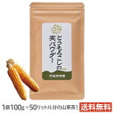 阿蘇薬草園 とうもろこしの実パウダー 100g(粉末)熊本県産