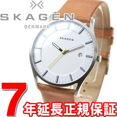 スカーゲン SKAGEN 腕時計 メンズ ホルスト HOLST SKW6282