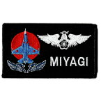 自衛隊グッズ 航空自衛隊 21飛行隊 FIGHTER TRAINING SQネームタグ/あなたのお名前刺繍します!