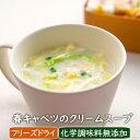 【数量限定】春キャベツのクリームスープ(3食)化学調味料無添加 春キャベツ レトルト 季節のスープ