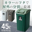 ゴミ箱 ごみ箱 ダストボックス【あす楽】分別 ダストボックスSPハンドルペール 45L