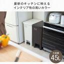 ゴミ箱 ごみ箱 エバン ペダル 45L SD スリム 【 2個セット 】【 ゴミ箱 おしゃれ 45リ...