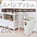 ゴミ箱 ごみ箱 エバン プッシュ 20L スリム 【 アスベル ASVEL 】