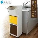 ゴミ箱 ごみ箱 N資源ゴミ 分別ワゴン 3段 ワイド 43L キャスター付 【 アスベル ASVEL 】