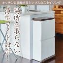 ゴミ箱 ごみ箱 ダストボックス【あす楽】分別 ダストボックスペダル 2段 ワイド 40L