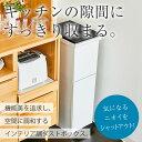 ゴミ箱 ごみ箱 分別 ペダル 2段 スリム 38L 【 新生活 アスベル ASVEL 】