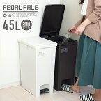 ゴミ箱 ごみ箱 エバン ペダル 45L SD スリム 【 2個セット 】【 ゴミ箱 おしゃれ 45リットル スリム ペダル 縦型 キッチン 分別 アスベル ASVEL 】
