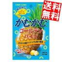 【送料無料】三菱食品かむかむゴー...