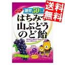 【送料無料】ノーベル糖質50%オフはちみつ山ぶどうのど飴90...