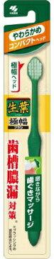 【72個で送料無料】小林製薬 生葉 極幅ブラシ コンパクトヘッド やわらかめ 1本 ×72点セット ( 4987072039847 )
