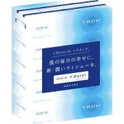 スーパー 大王製紙 ウォーター ティッシュ 4902011711400