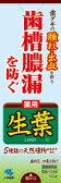 小林製薬 生葉 ( しょうよう ) b 100g  ( 歯周病・知覚過敏用歯磨き粉・ハミガキ ) ( 4987072008041 )
