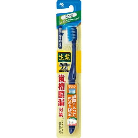 【令和・ステイホームSALE】小林製薬 生葉歯間に入るブラシ レギュラー ふつう ( 内容量:1本 ) ( 4987072043240 )
