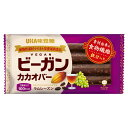 UHA味覚糖 ビーガンカカオバー ラムレーズン 1個入