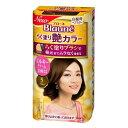 【送料込】 花王 ブローネ らく塗り艶カラー 5 ブラウン 100g 1個