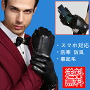 カシミヤ 手袋