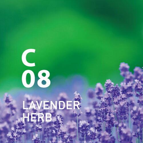 【公式アットアロマ】C08ラベンダーハーブ10mlLAVENDERHERB