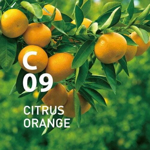 【公式アットアロマ】C09シトラスオレンジ10mlCITRUSORANGE